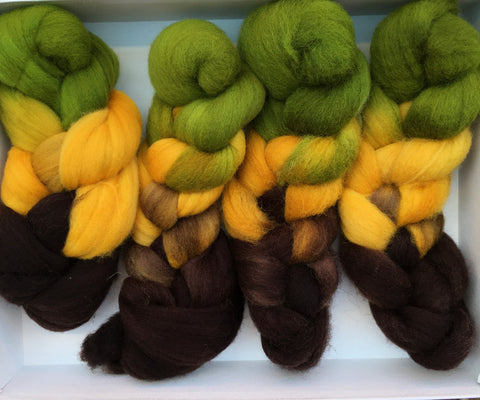 Unique Colorway;<br>Breed Study 4; Four Different 100% Fiber Types