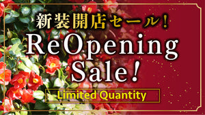 ReOpening Sale!