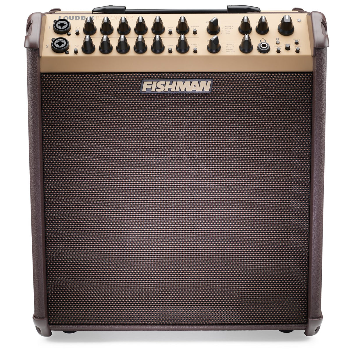 Fishman Loudbox Performer Bluetooth Acoustic Guitar Amplifier (180 Watts, 1x8 Inch)