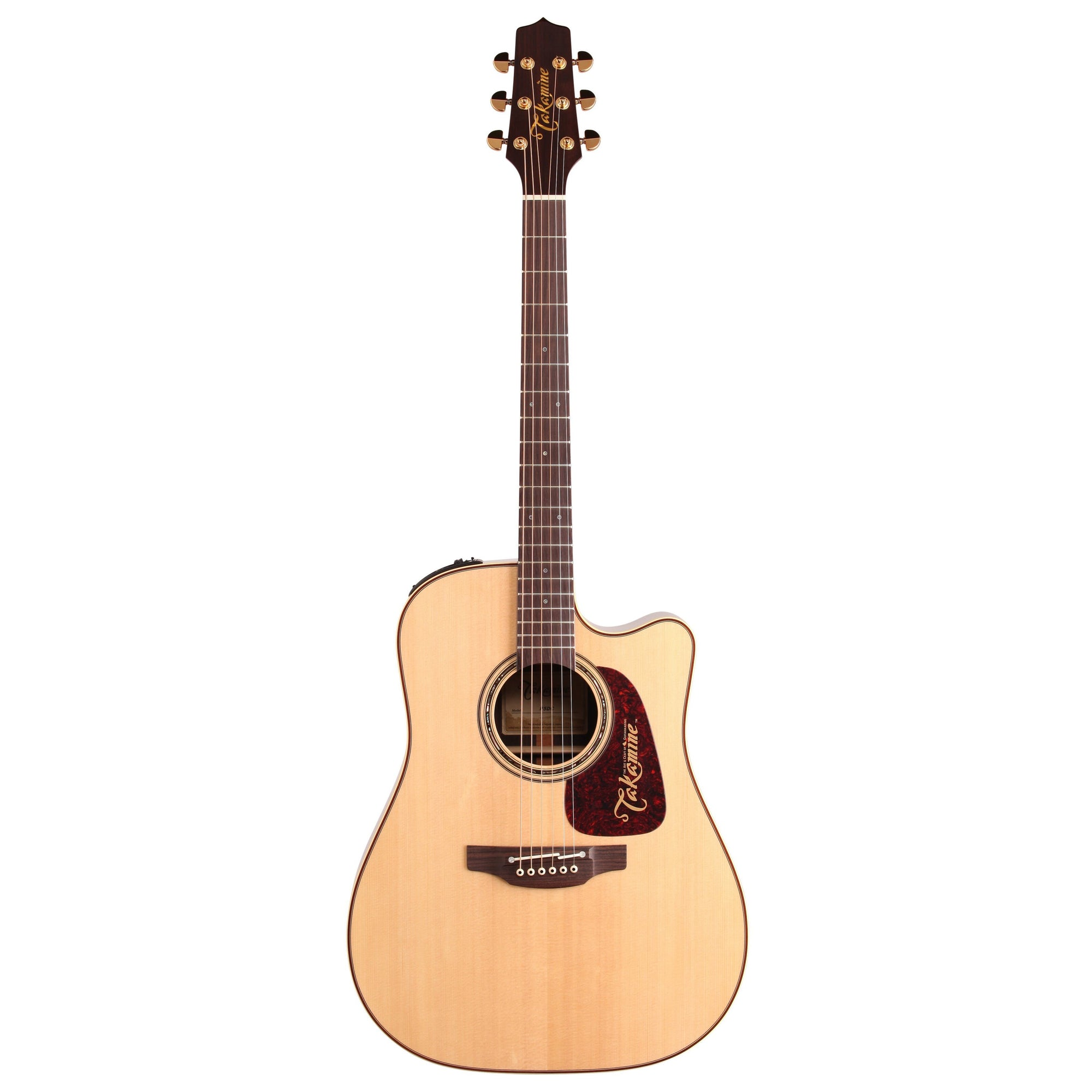 Takamine P5DC Pro Series Dreadnought Acoustic Guitar (with Case)
