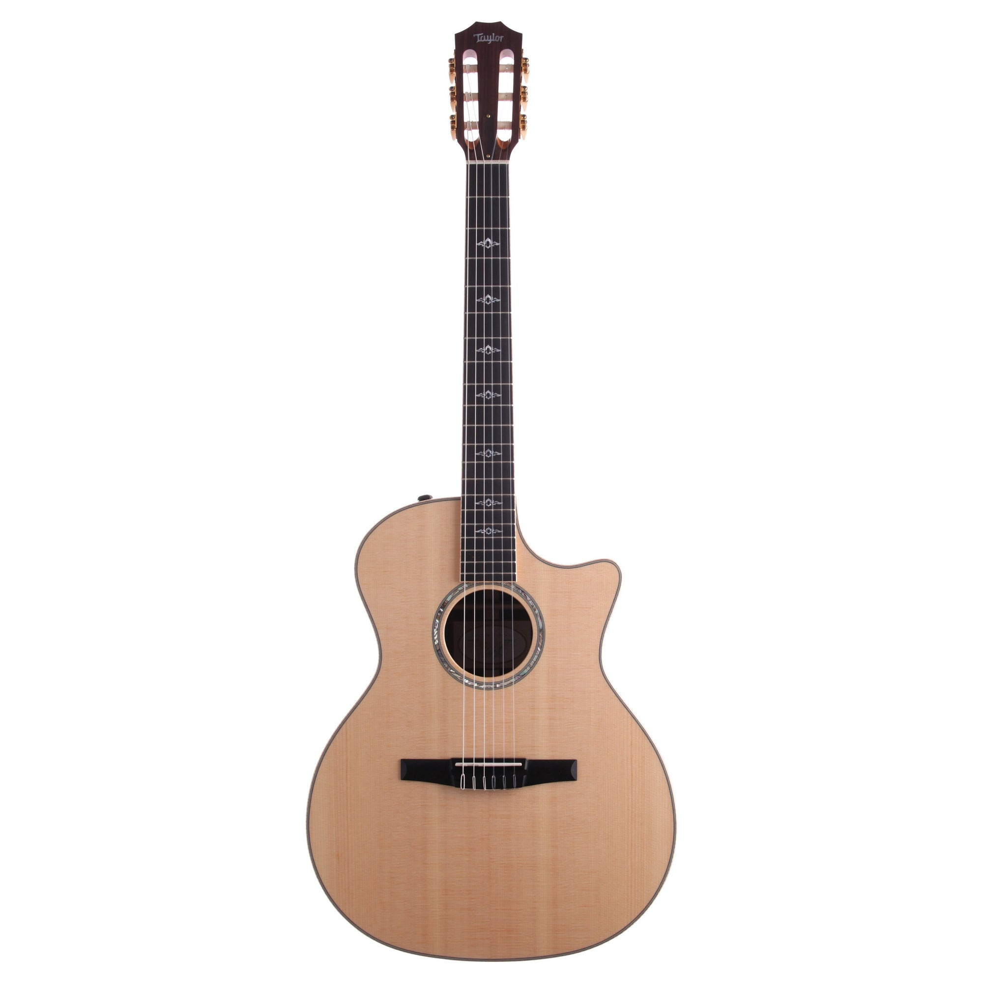 Taylor 814ce-N Grand Auditorium Classical Nylon Acoustic-Electric Guitar (with Case)