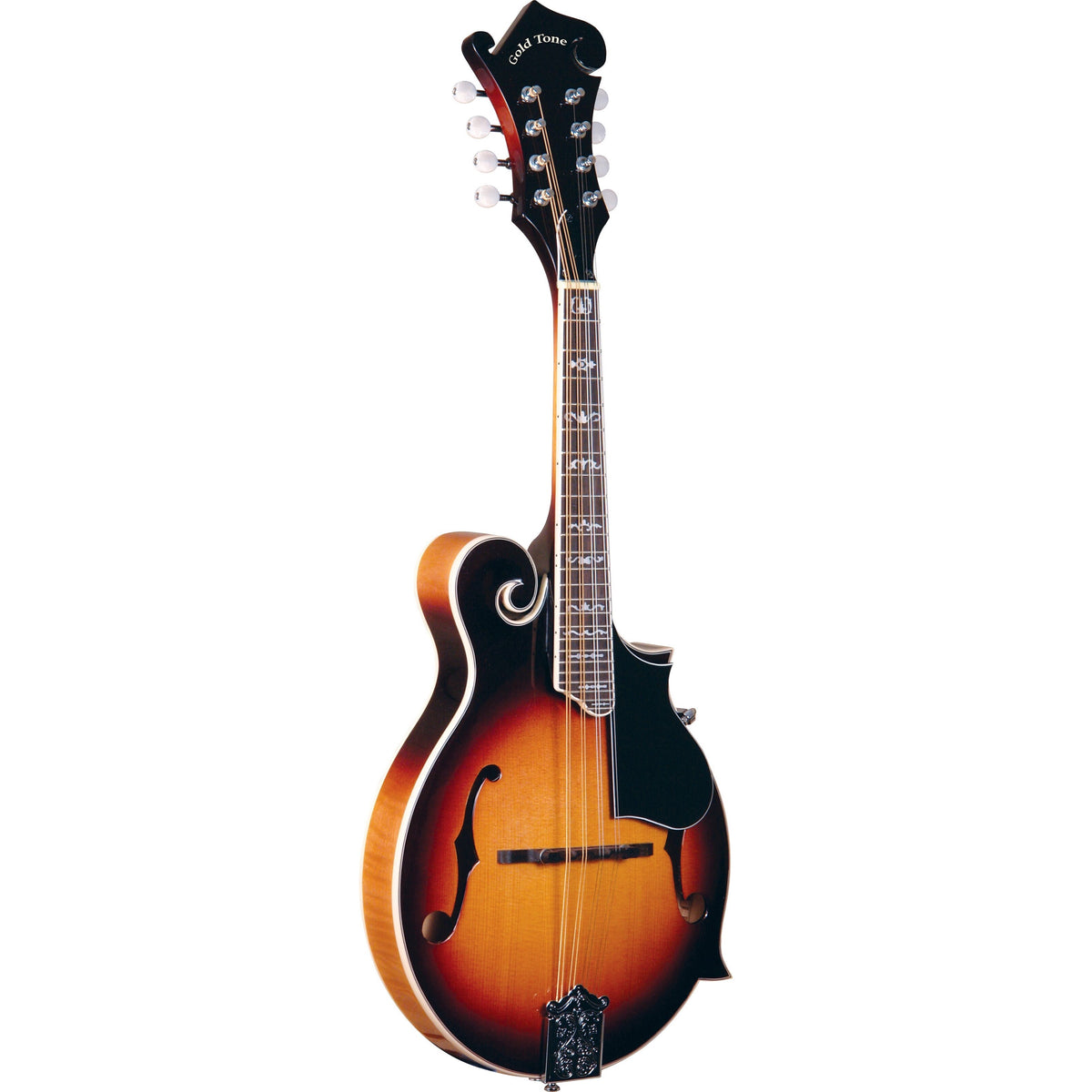 Gold Tone GM-35 F-Style Mandolin (with Case)