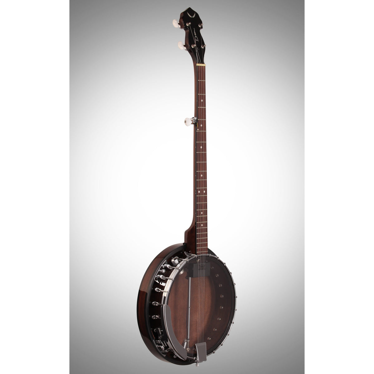 Dean Backwoods 2 Electric Banjo with Pickup, Black Chrome