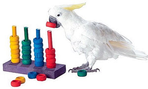 Cognitive enrichment for parrots