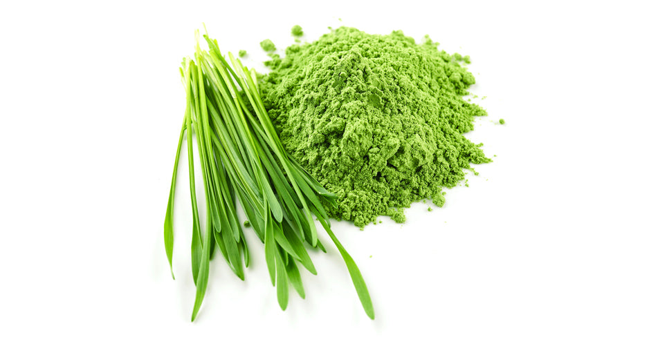 Potent wheatgrass, barley and alfalfa grass juice powder..