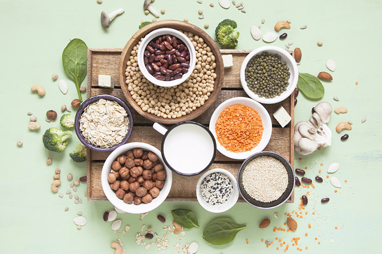 Different types of plant-based protein.
