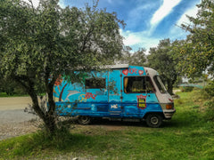 Funky 60's car in an olive grove