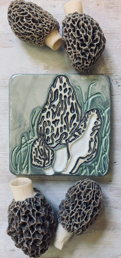 Morel 5 x 5 Art Tile