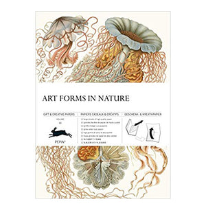 Art Forms in Nature: Gift & Creative Paper Book Vol. 83 - MAULE & MAULE