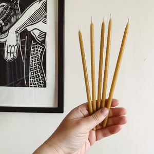 Beeswax Thin Taper Candles (bundle of 5) - MAULE & MAULE