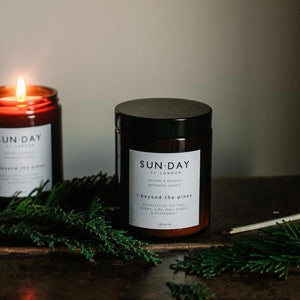 Beyond the Pines Candle - MAULE & MAULE