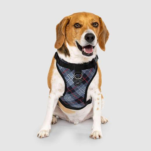 Canada Pooch The Everything Harness: Water-Resistant Series