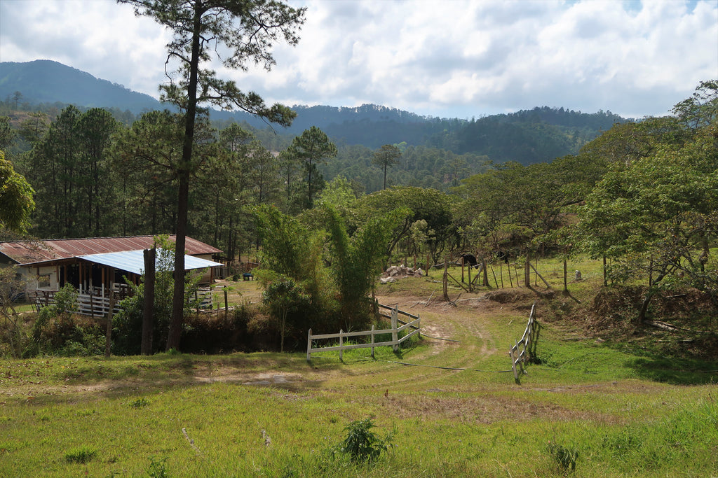 Connecting Communities, Honduras