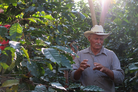 COMSA member, Fabio Claros, at his farm Finca la Casita.