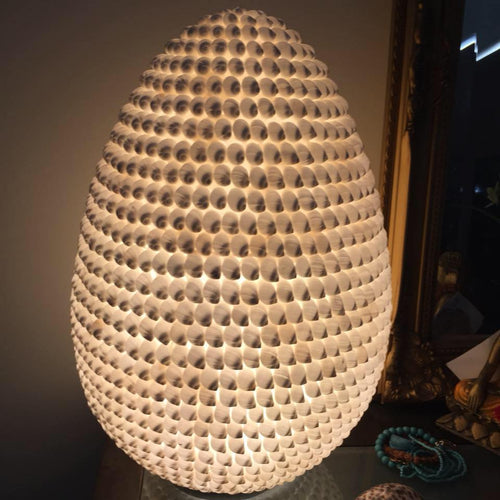 Cowrie Shell Lamp