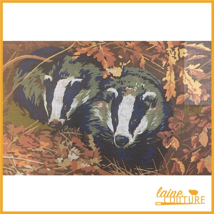 Penelope - Badgers