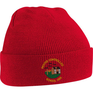 Pentre Knitted Hat