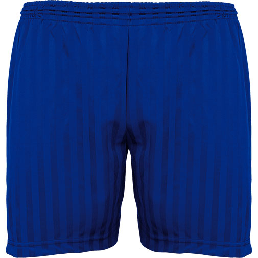 Royal Blue Shadow Stripe Shorts