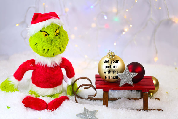 family friendly grinch photos for christmas