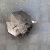 From above view of person holding Pug umbrella