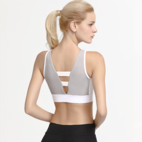 Cobra II Bra (3 Colours)