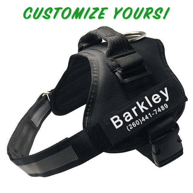 Black Personalized Reflective Safety Dog Harness