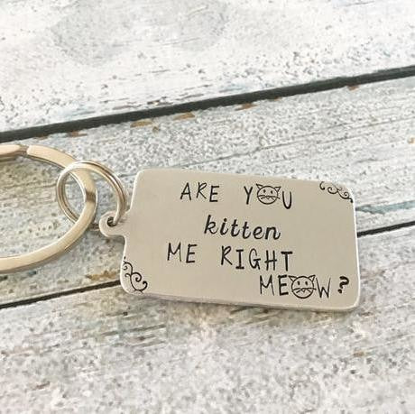 Are You Kitten Me Right Meow Keychain Keychains - Giving Gecko Giving Back To Animal Rescue Charities