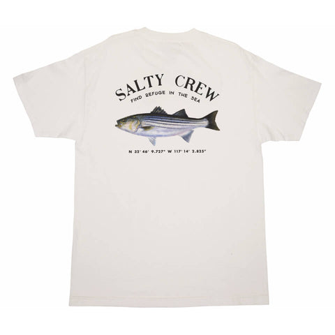 Salty Crew STRIPER STANDARD S/S TEE in White