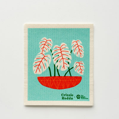 SPRUCE Compostable Dishcloth