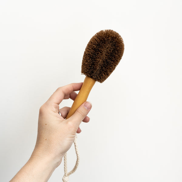 Coconut Fibre Veggie Brush with Handle - Medium