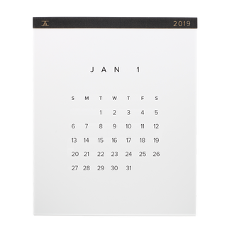 2019 Wall Calendar by Appointed