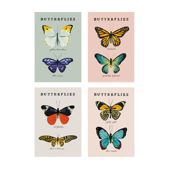 Butterflies Postcard Set by Idlewild Co.