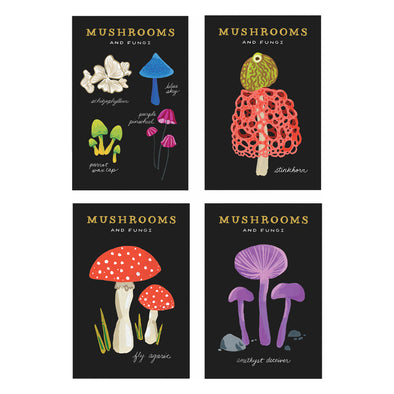Mushrooms and Fungi Postcard Set by Idlewild Co.