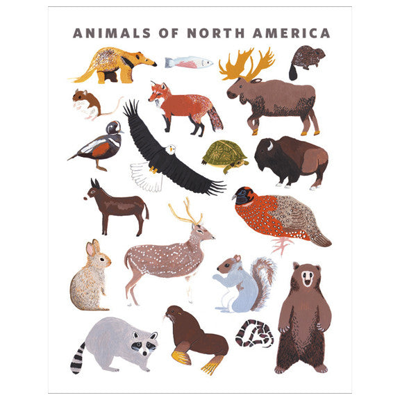 Animals of North America Print by Small Adventure