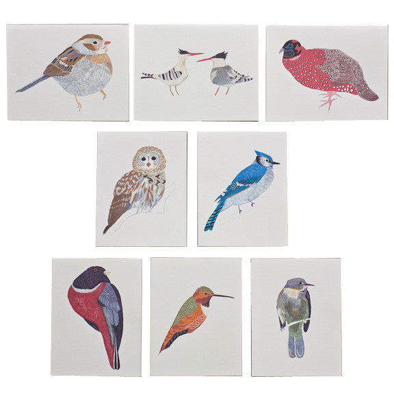 North American Bird Card Set by Small Adventure
