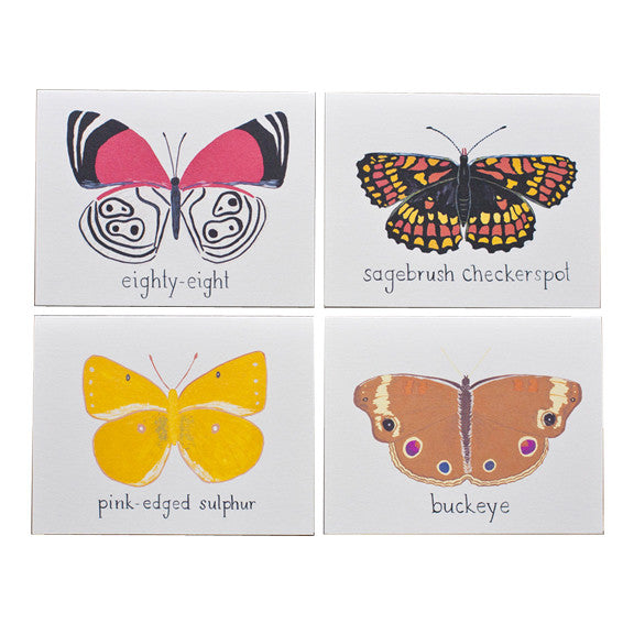 Butterflies of North America Card Set by Small Adventure