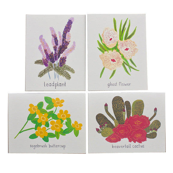 Flowers of North America Card Set by Small Adventure
