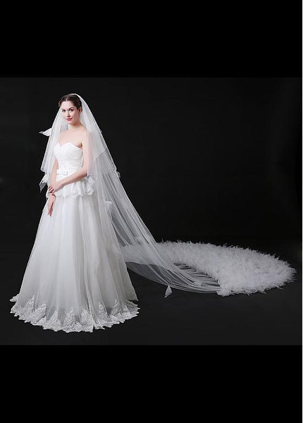 Graceful Tulle Long Wedding Veils For Wedding Party , WV0111