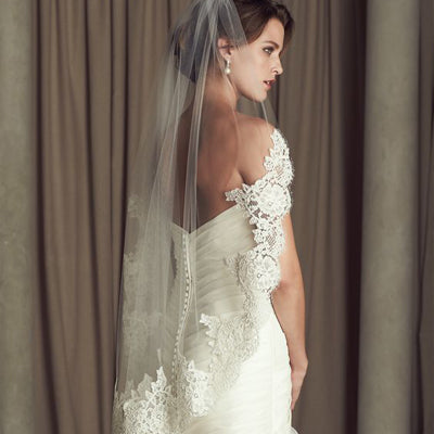 Attractive Tulle  Short Wedding Veil With Lace Appliques , WV0118