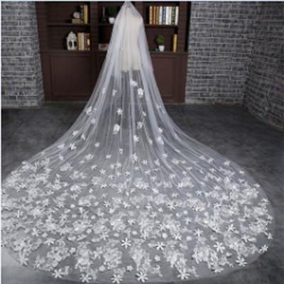 Elegant Long Lace Applique Wedding Veil For Wedding Party, WV0104