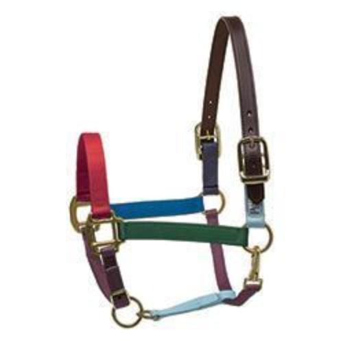 Perri's Color Vision Nylon Breakaway Halter