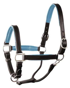 perri's soft padded leather turnout halter black sky blue