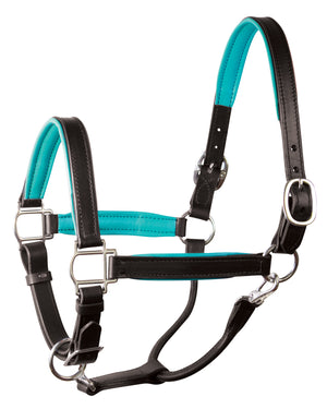 perri's soft padded leather turnout halter black and turquoise