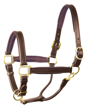 perri's soft padded leather turnout halter havana brown