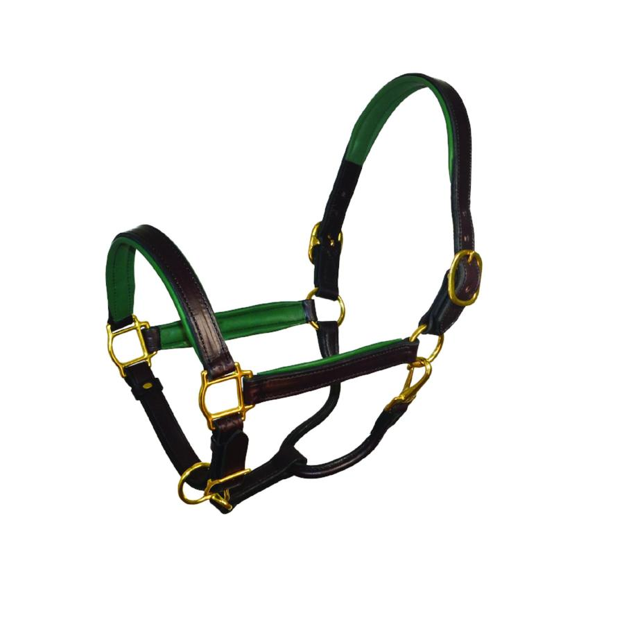 perri's soft padded leather turnout halter hunter green havana
