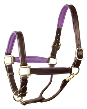 perri's soft padded leather turnout halter  havana purple