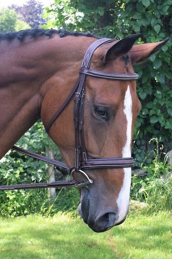 Black Oak Laurel Bridle