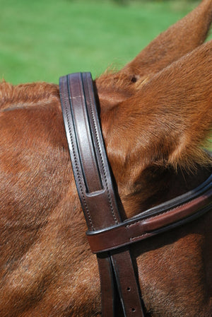 KL Italia Middleburg Bridle Crown Detail