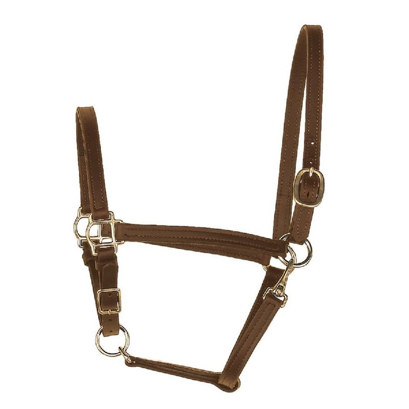 perri's one inch leather turnout halter black