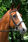 Red Barn Tryon Bridle